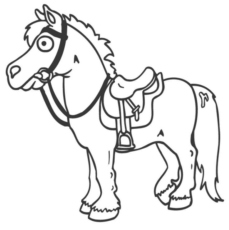 737x740 Horse With Saddle Horses Saddles