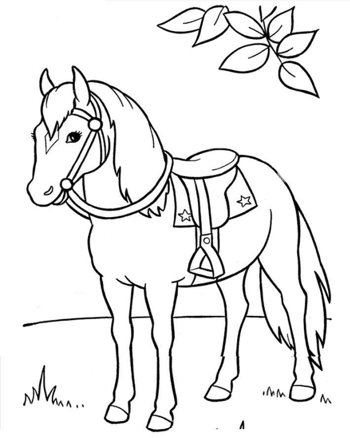 709x886 Horse Saddle Horses Horse Saddles, Crafts