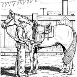 268x268 Coloring Pages Of Horse Saddles Archives
