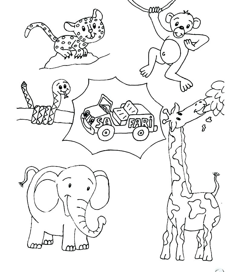 794x900 Printable Animals Coloring Pages Forest Animals Coloring Pages