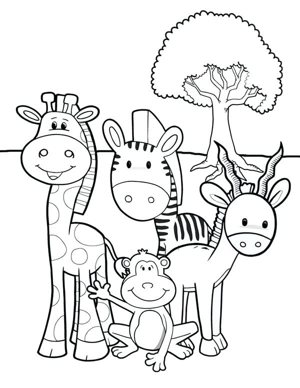 600x776 Safari Animals Coloring Pages Beautiful Animal Coloring Pages