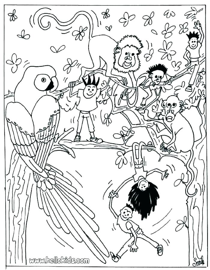 700x900 Safari Coloring Pages Safari Coloring Page Coloring Pages Animals