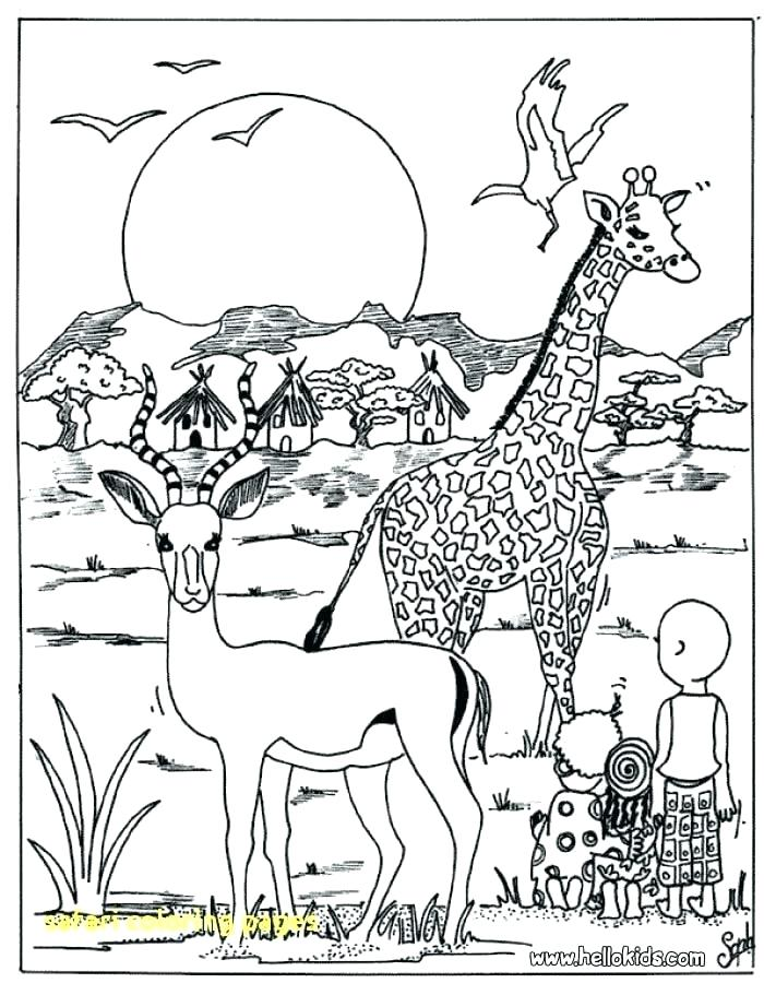 700x900 Fancy Safari Animals Coloring Pages For Coloring Site