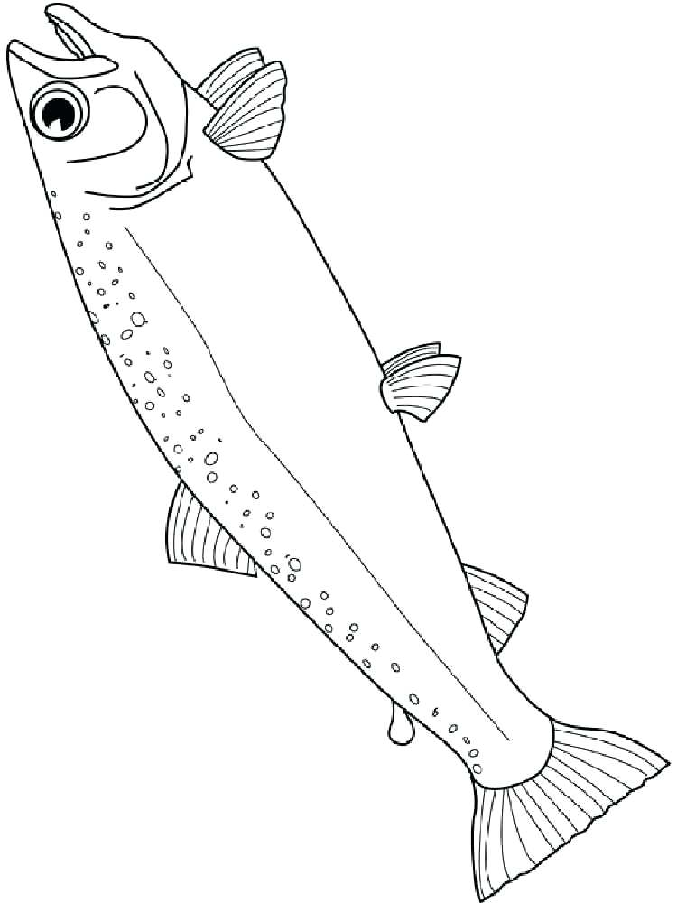 750x1000 Salmon Coloring Page Salmon Coloring Pages Chinook Salmon