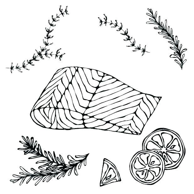 618x618 Salmon Coloring Pages Salmon Coloring Pages Sketch Coloring Page