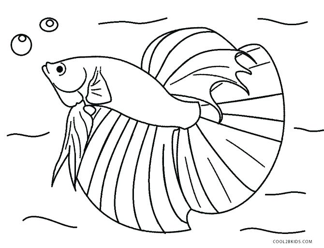 670x512 Realistic Fish Coloring Pages Realistic Fish Coloring Pages