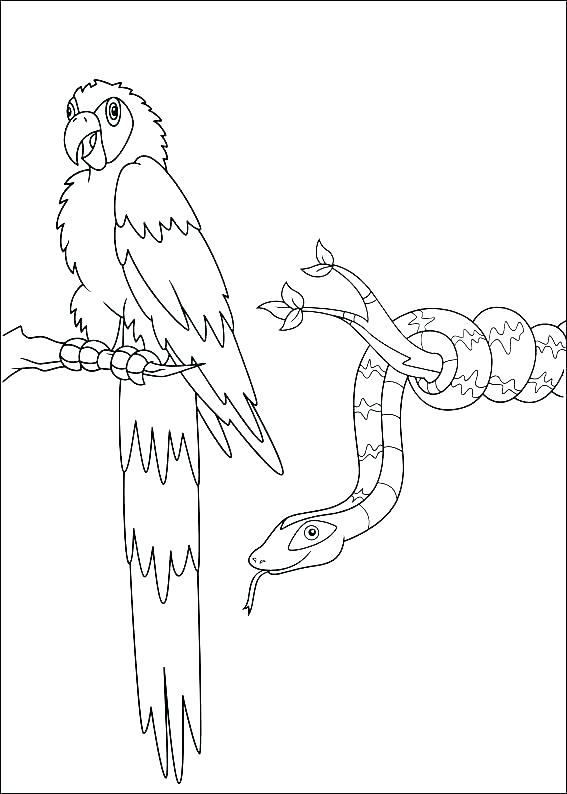 567x794 Chargers Coloring Pages Daytona Charger Coloring Pages