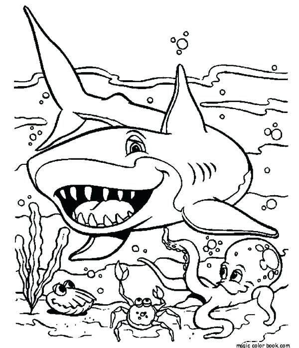 600x699 Shark Printable Coloring Pages Coloring Pages Sharks Printable