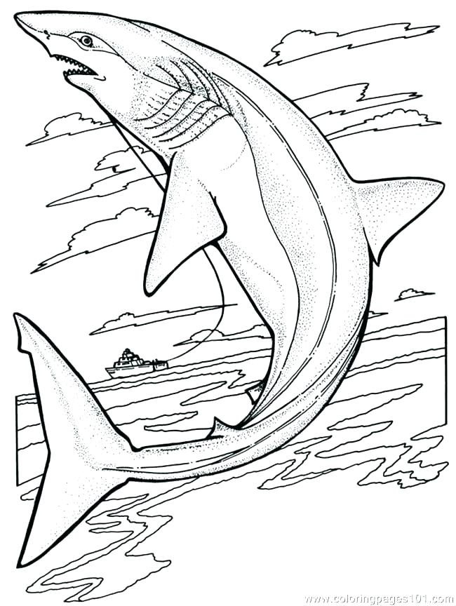 650x864 Shark Printable Coloring Pages Free Shark Coloring Pages Coloring