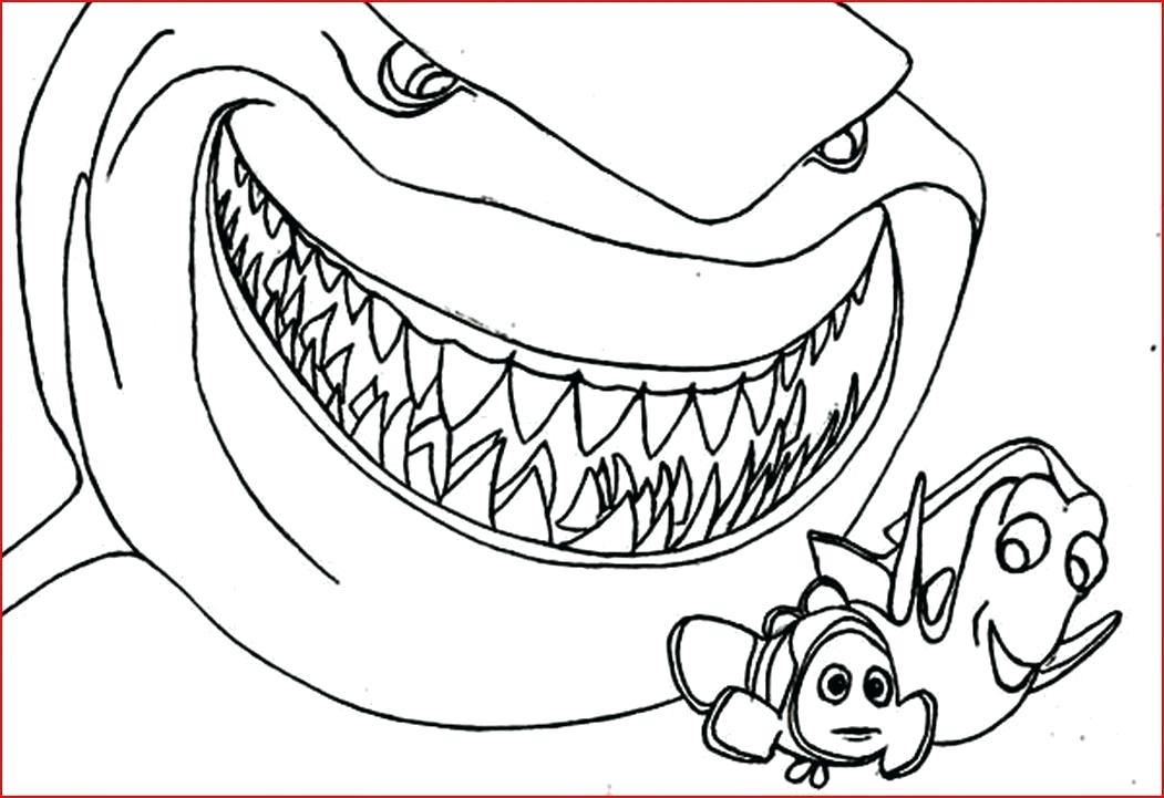 1051x721 Sharks Coloring Pages Printable Shark Coloring Pages Free Coloring