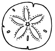 236x216 Sand Dollar Coloring Page Watercolor Template Mermaid Birthday