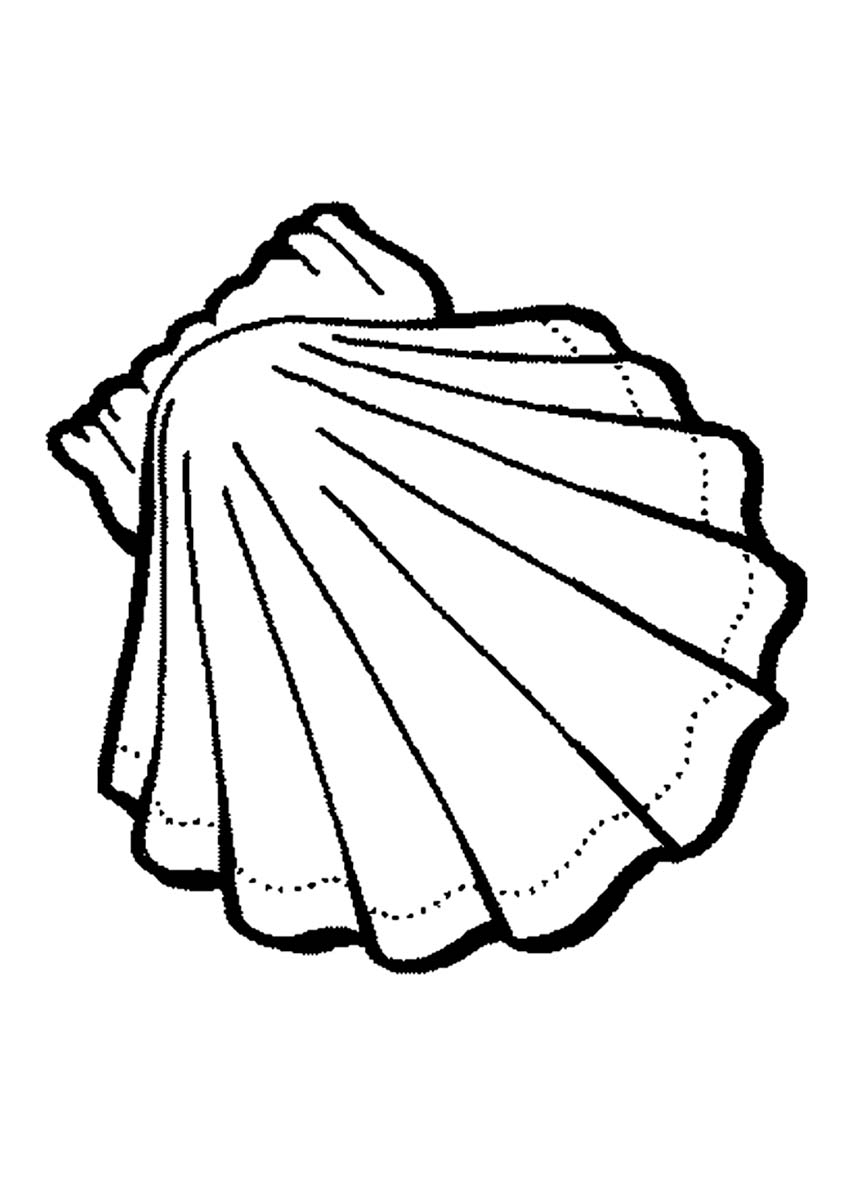 850x1203 Sea Shell Coloring Page