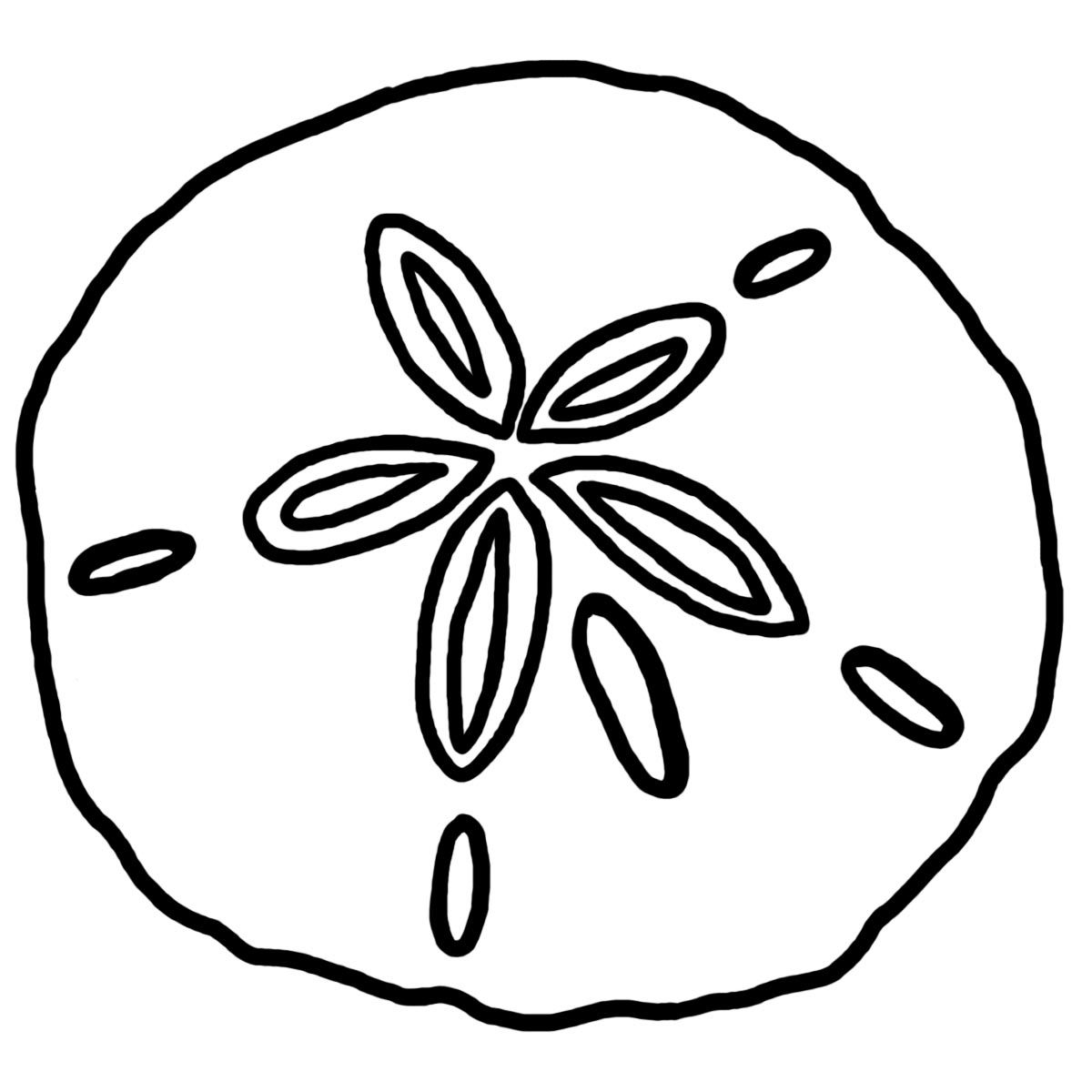 1200x1200 Coloring Pages Shells And Sand Dollars Sand Dollar Custom