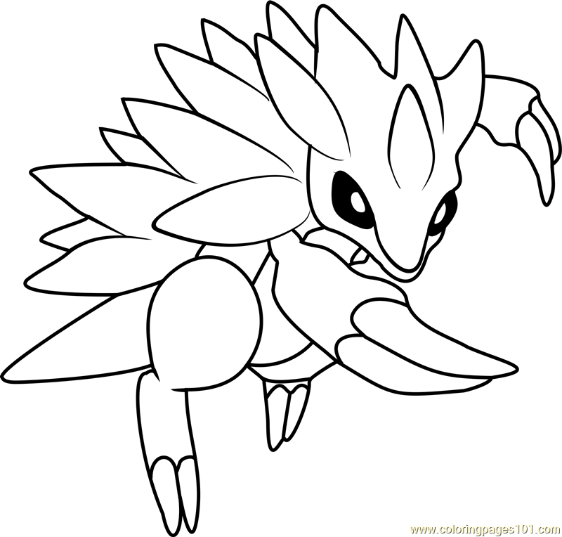 800x764 Coloring Pages