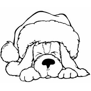 300x300 Sleeping Dog In Santa Hat Coloring Page