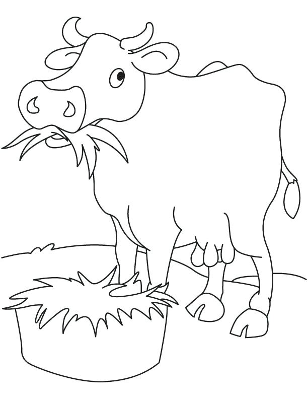 612x792 Grass Eating Cow Coloring Page Download Free Grass Eating Cow
