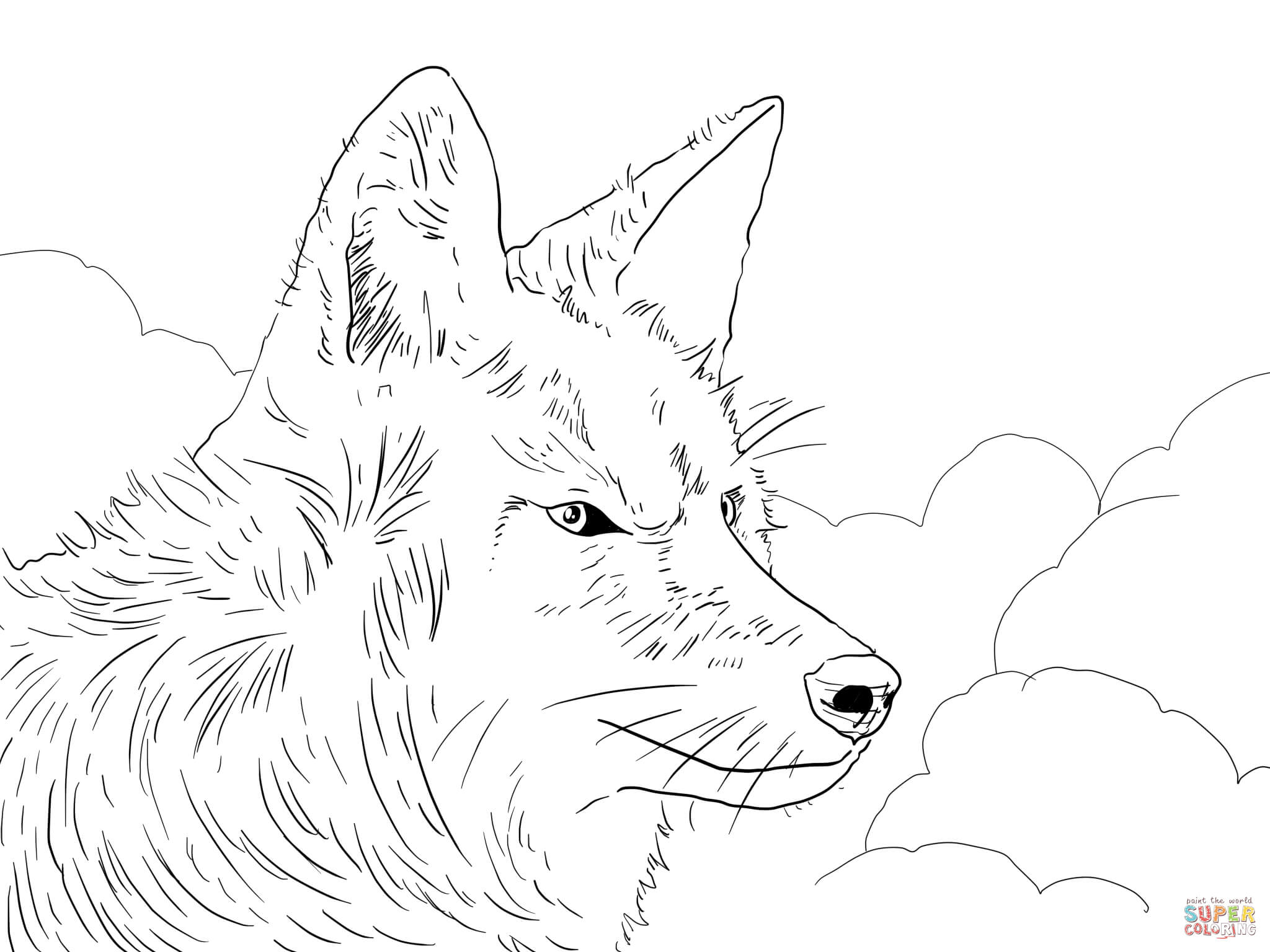 2048x1536 Wondrous Design Super Coloring Pages Coyote Head Page Free