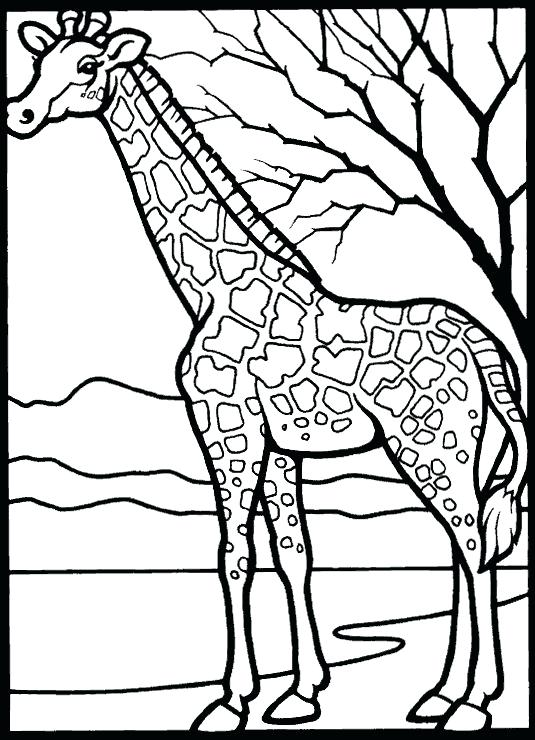 535x740 African Coloring Pages Coloring Pages Coloring Pages African