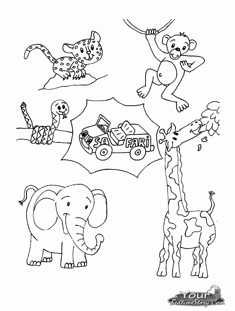 Savannah Coloring Page