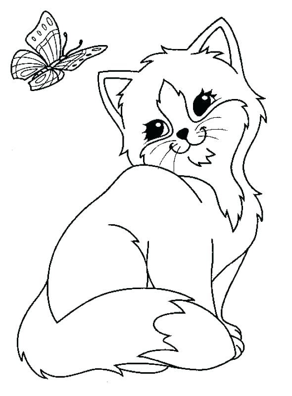 590x800 Cat Color Page Cat Color Pages Printable Animals Cats Cat Coloring
