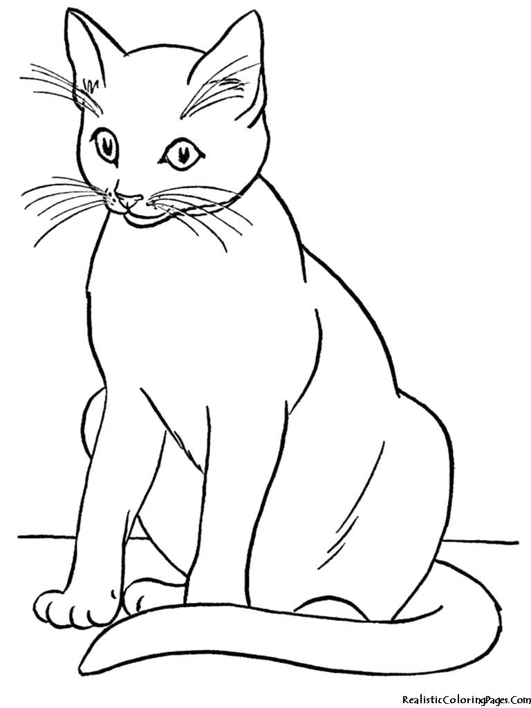 768x1024 Coloring For Kids Amazing Black Caten Pages Free Printable Cat