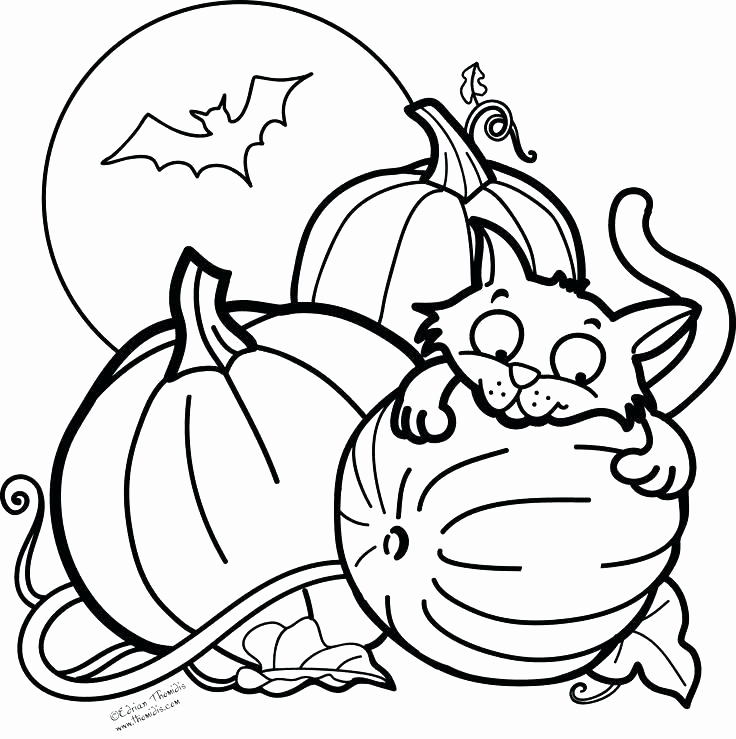 736x739 Scary Black Cat Coloring Pages Images Scary Halloween Coloring