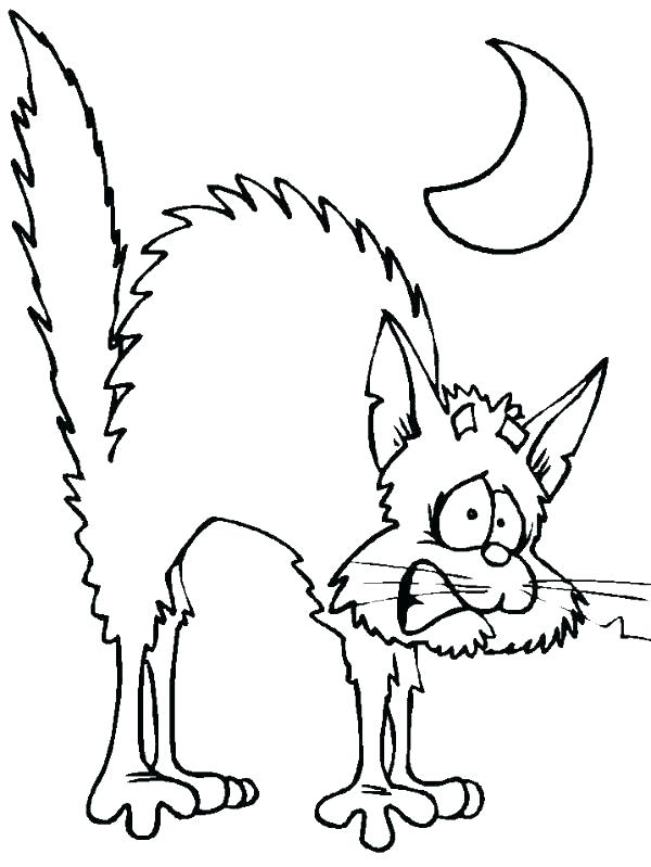 600x799 Scary Cat Coloring Pages Black Cat Coloring Pages Cats Coloring