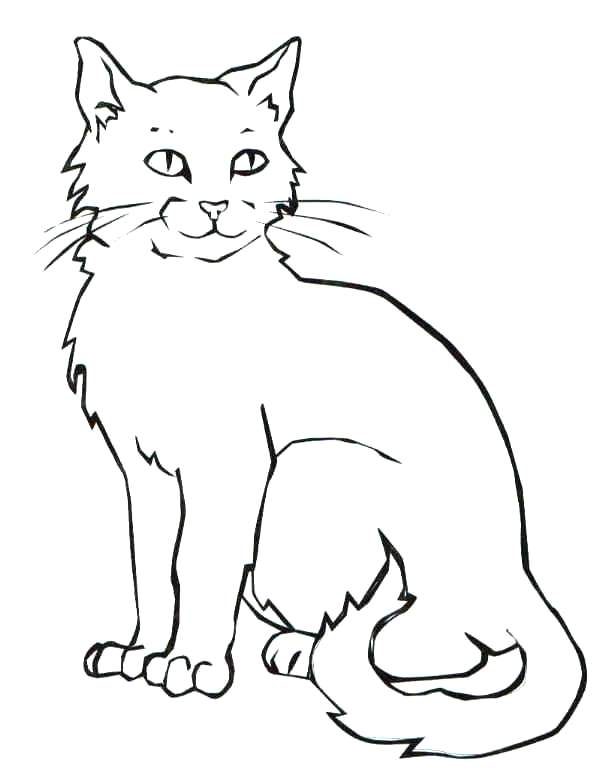 610x784 Black Cat Coloring Page Scary Black Cat Ring Pages Page Animal