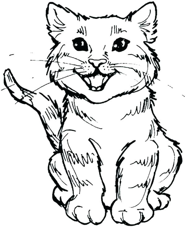 600x731 Halloween Cat Coloring Pages Cat Coloring Page Cat Coloring Pages
