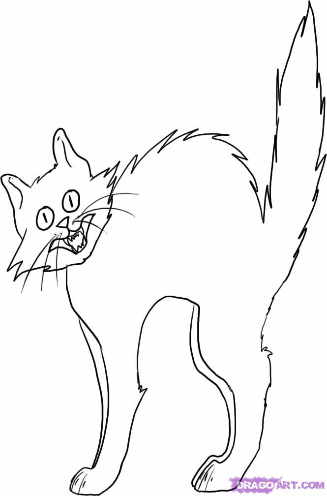 665x1008 Scared Cat Cartoon Az Coloring Pages Scared Cat Coloring Page