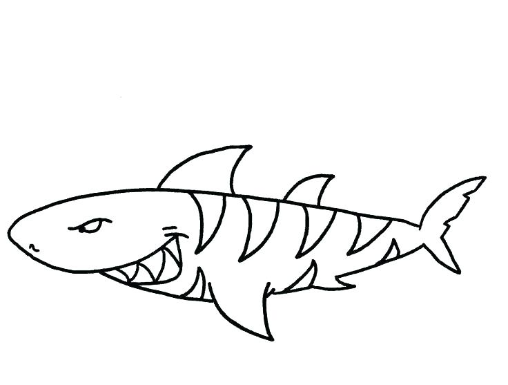 736x557 Shark Coloring Pages New Tiger Shark Coloring Pages Fee Shark