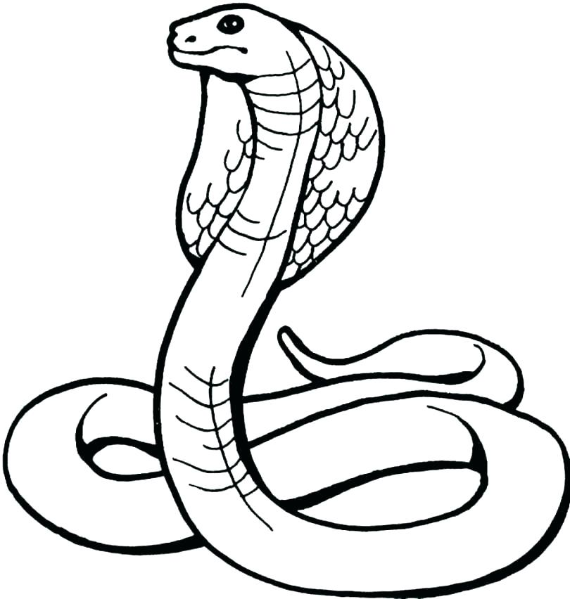 810x852 Coloring Pages Of Snakes Snake Coloring Pages Snake Snake Coloring