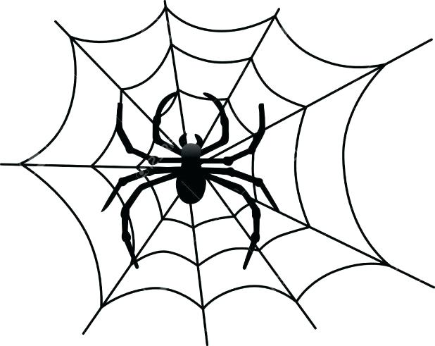 618x491 Spider Web Coloring Page With Spider Web Coloring Pages Printable