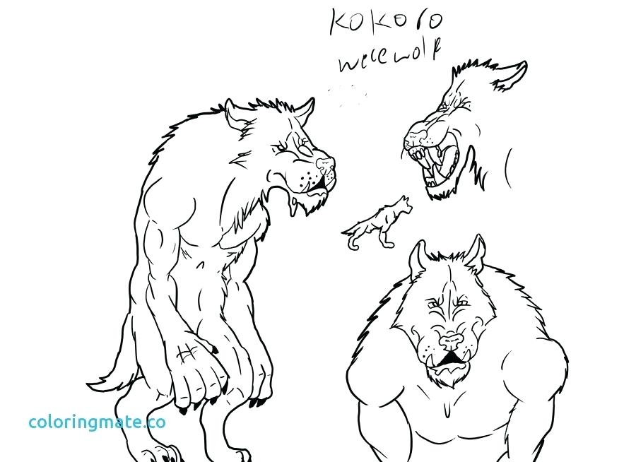 900x654 Werewolf Coloring Pages Werewolf Coloring Pages Scary Werewolf