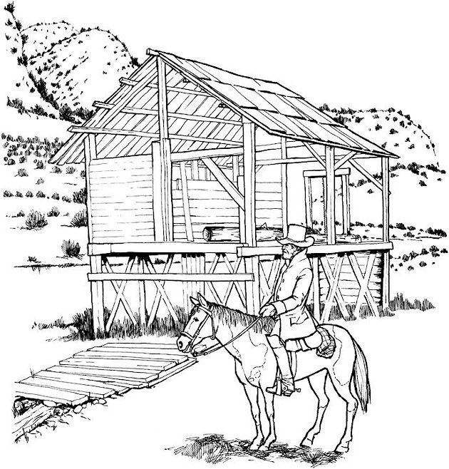 630x658 Best Coloring Pages Images On Adult Coloring