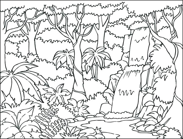 736x560 Coloring Pages Nature Scenery Coloring Pages Nature Scene Coloring
