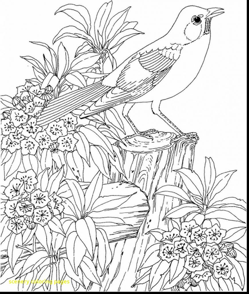 869x1024 Coloringage Winter Sceneryages Mountain Christmas Scenes
