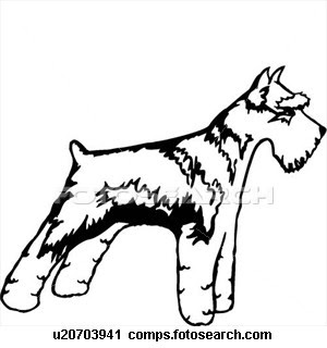 300x320 Giant Schnauzer Coloring Pagesdog Coloring Pages