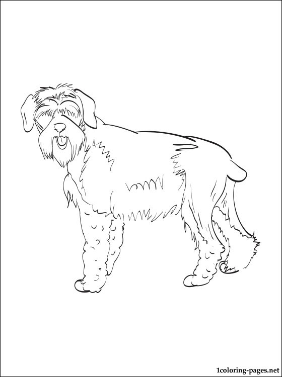 560x750 Giant Schnauzer Coloring Page Coloring Pages