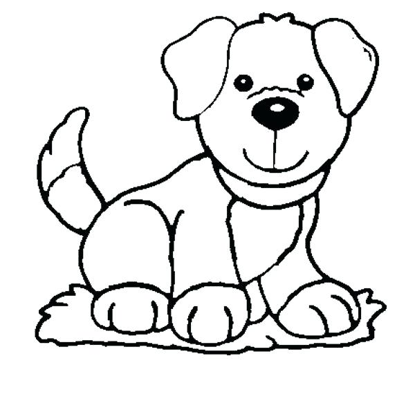 600x596 Schnauzer Coloring Page Picture Miniature Schnauzer Coloring Pages