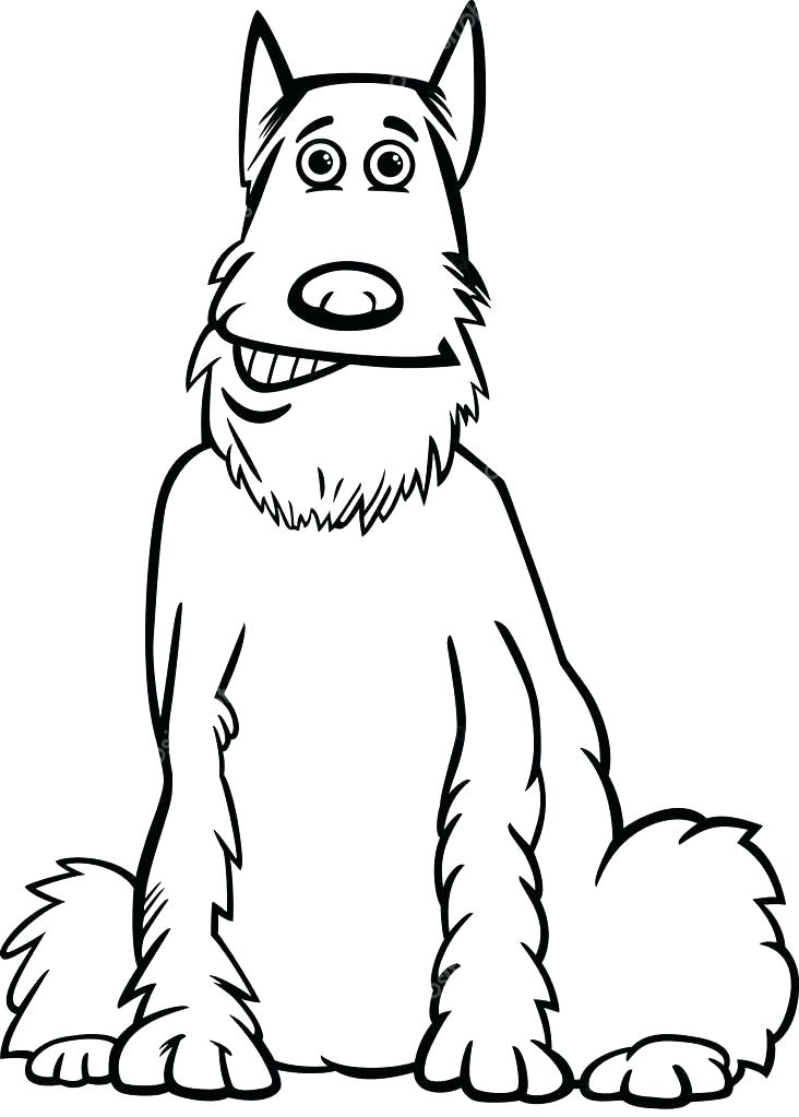 732x1023 Shaggy Coloring Page Schnauzer Coloring Page Black And White