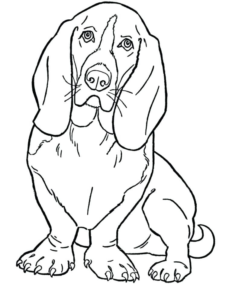 768x940 Dog Printable Coloring Pages Free Coloring Pages Dogs Schnauzer