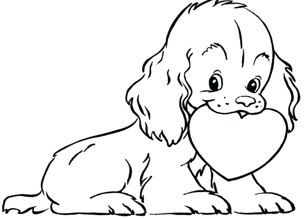 998x720 Dog With A Blog Coloring Pages Free Coloring Pages Dogs Schnauzer