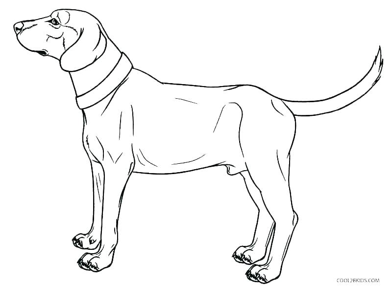 800x589 Free Coloring Pages Dogs Dog Printable Coloring Pages Free