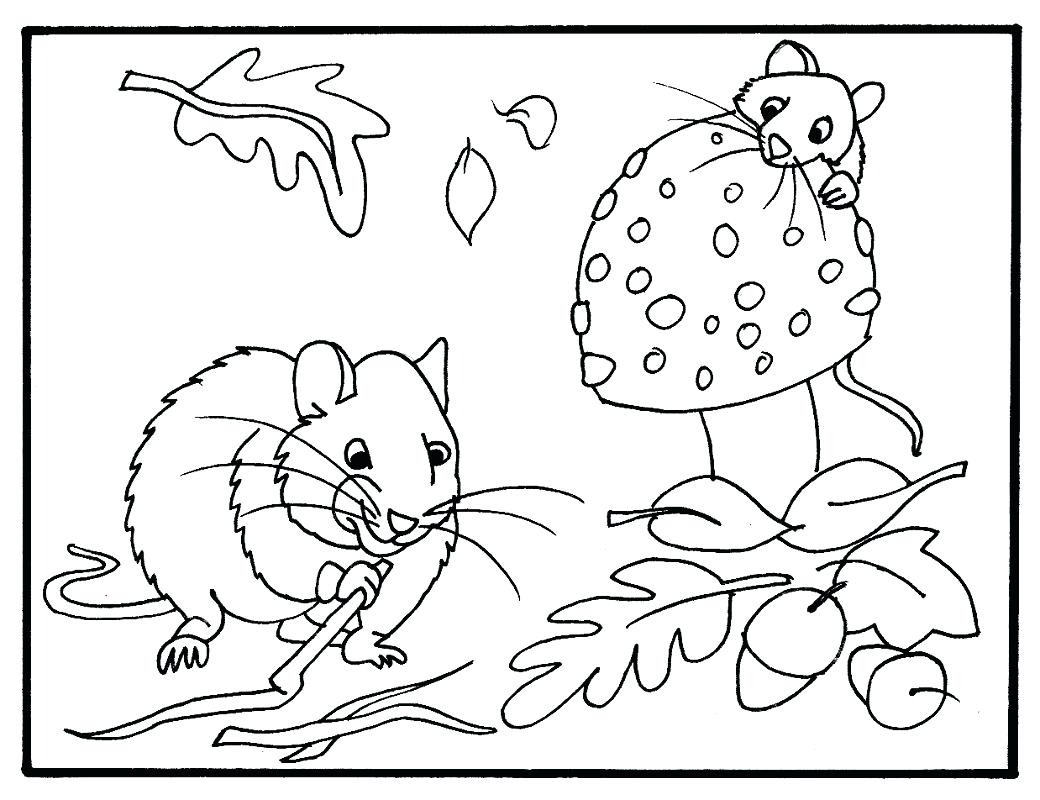 1040x800 Coloring Pages Fall Coloring Page Adult Autumn Pages Printable