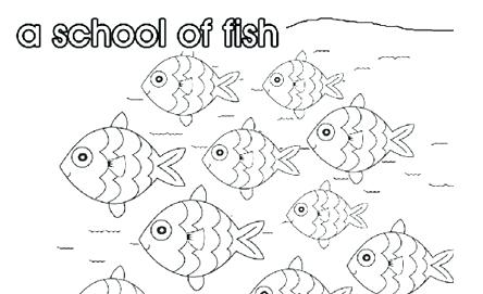 444x271 School Of Fish Coloring Pages