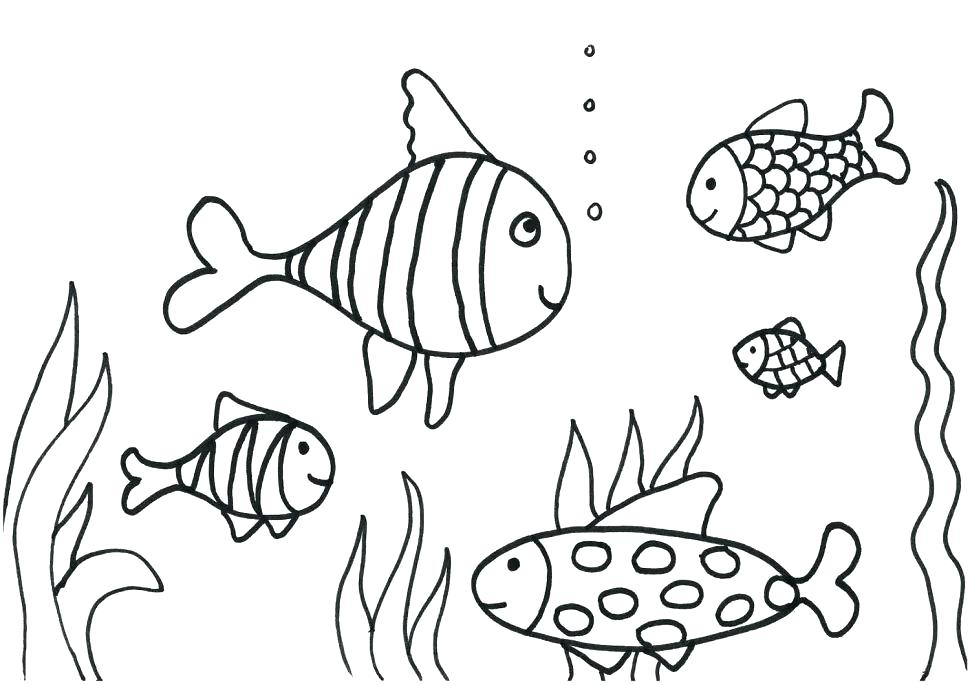 970x685 School Of Fish Coloring Pages Coloring Sheets Of School Fish Fish