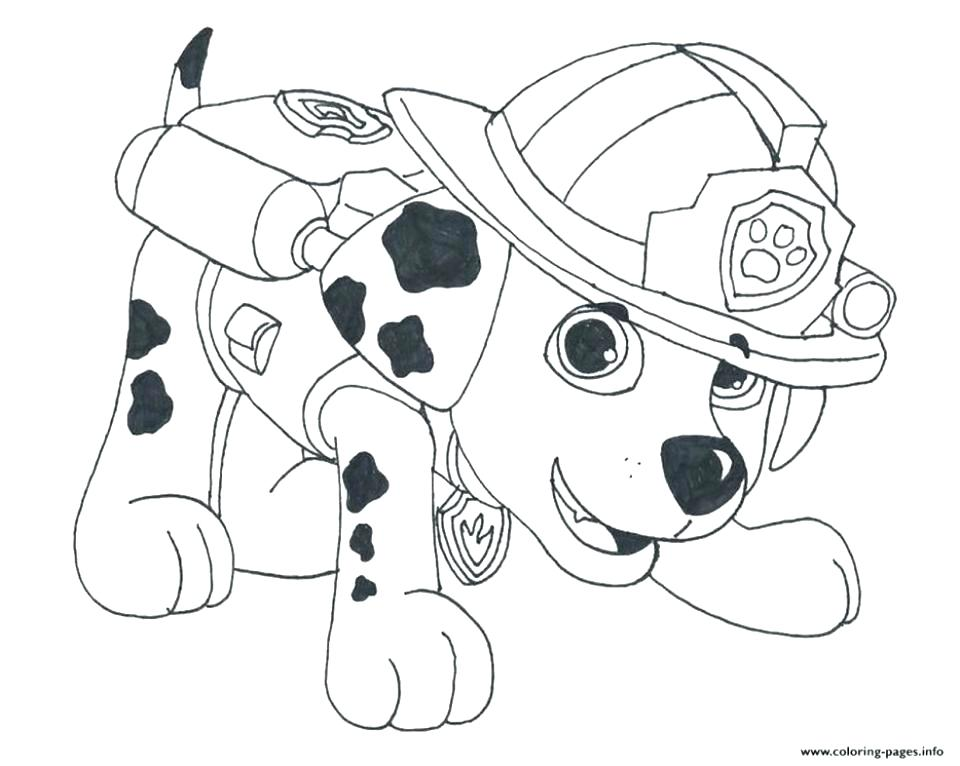 960x766 School Of Fish Coloring Pages School Coloring Pages Little Horse