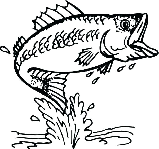 618x577 Coloring Pages Of Fishes Luxury Fish Coloring Page About Remodel