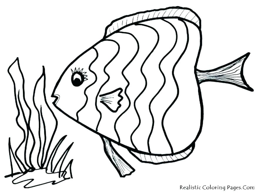 878x659 Fish Coloring Page Clown Fish Coloring Page Co Fish Coloring Pages